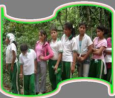 INSTITUCION EDUCATIVA PALACIO