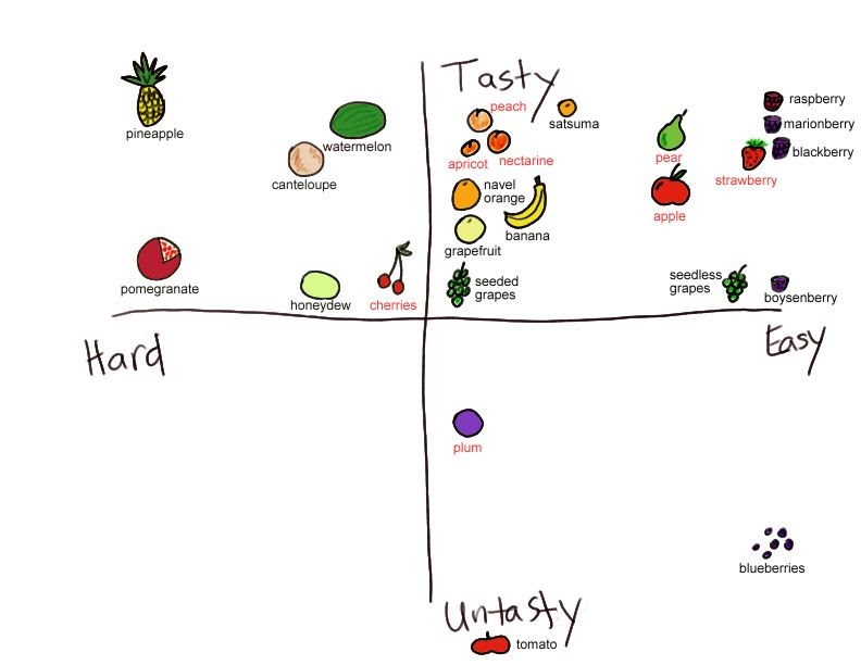 sydney u0026 39 s blog  xkcd fruit chart  not accurate enough