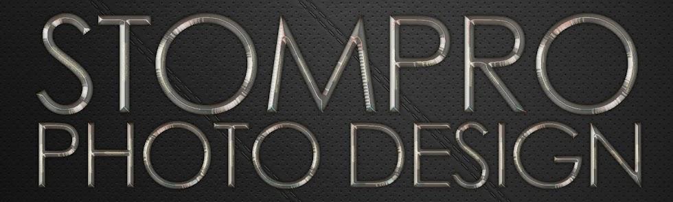stompro+design+photo+design+chrome+leather.jpg