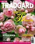 Rosträdgård/Allt om Trädgård
