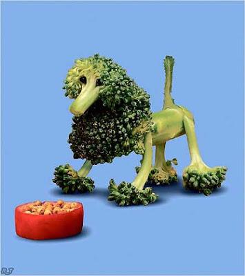wegetariański humor