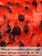 owoce owoc arbuz smieszne ciekawostki arbuza ciekawostka