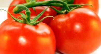 ABC Warzyw - pomidory