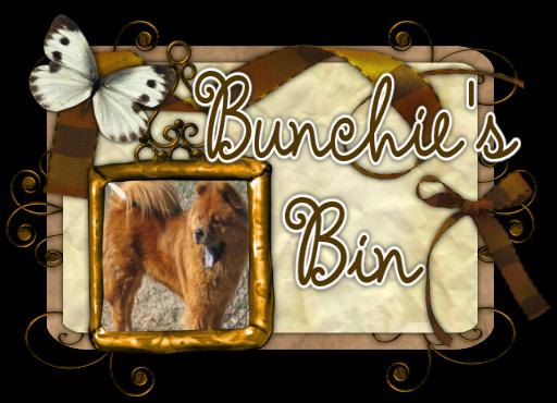 Bunchie's Bin