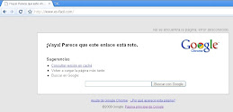 Desde Google Chrome