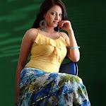 Tamil Actress Meenaksi Gellery
