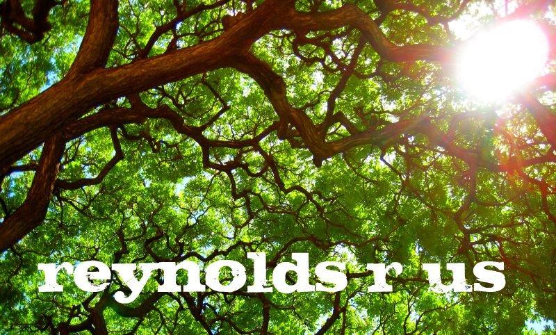 Reynolds R Us