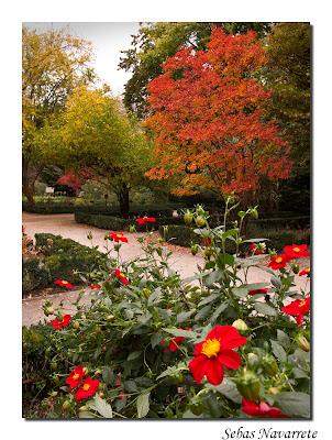 Instantes fotos de sebasti n navarrete jard n bot nico for Programacion jardin botanico