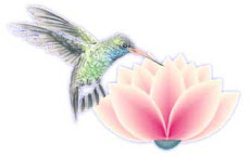 Salve a natureza, com toda sua beleza!