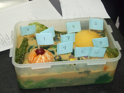 Jello Edible Plant Cell Projects http://laureninperu.blogspot.com/2009/09/edible-cells.html