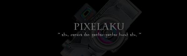 PiXeLaKu.