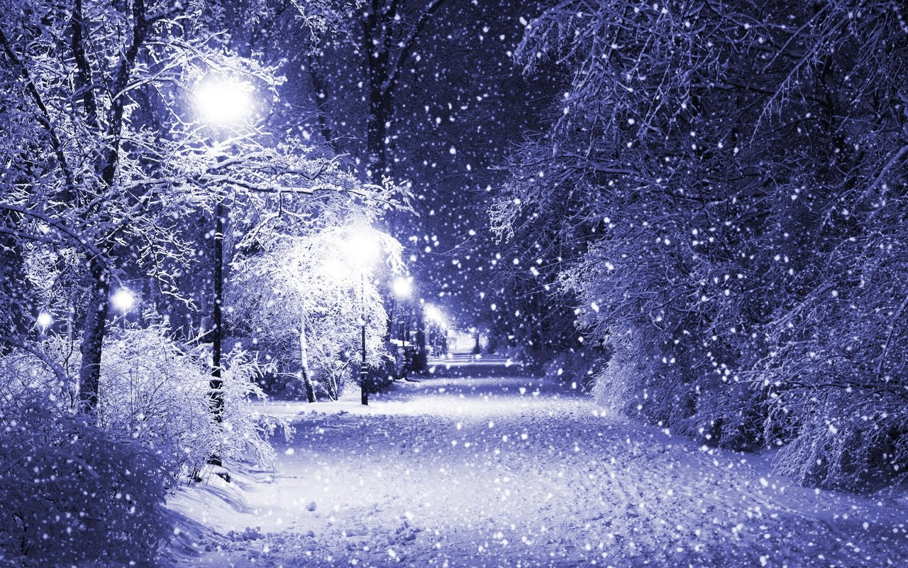 Amazing winter night frozen tree in winter hd desktop Beautiful snowfall pictures