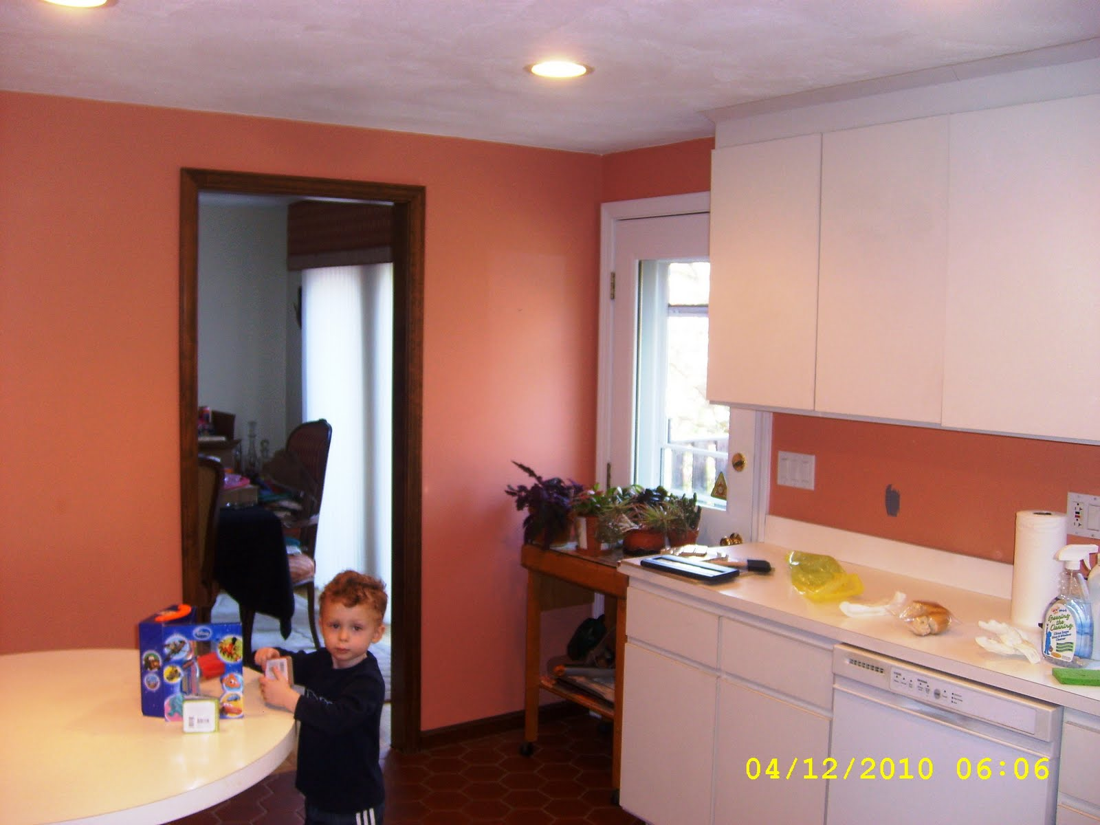 formica cabinets White formica countertops Coral colored walls