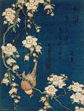 dom-fafe e cerejeira-do-japão