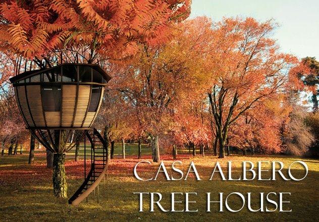 Tree House / Casa Albero