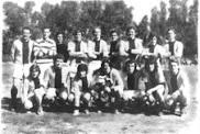 1973 Campeón