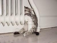 astuce économies de chauffage