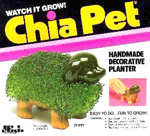 chia-pet-puppy.jpg