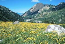 Wasatch Mountains - Utah
