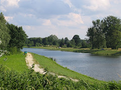 Skierniewice - Zadębie. Foto z portalu Skierniewice.pl