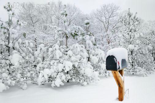 Let it Snow – My Snowy Loop Hike And Hot Tea | Ozarkmountainhiker