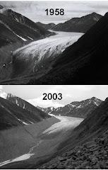 Recuo da geleira McCall, Alasca