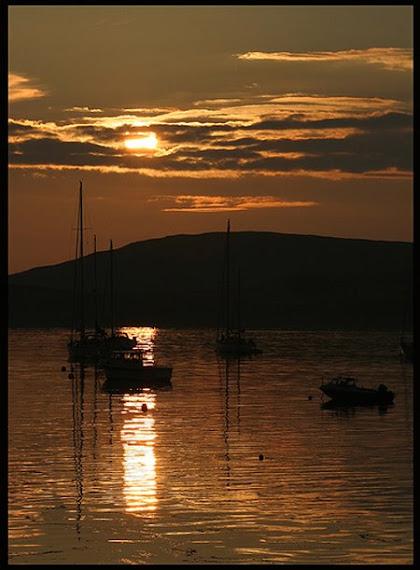 """Parfois mouilles """"in the harbour"""", quand il n'y a plus de place dans le Marina, un reve quand meme"""