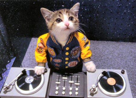 Juego: Foto Conection - Página 2 Kitty-dj