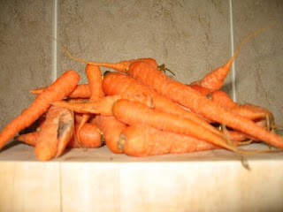 Irish Carrots by ng @ Whats for Dinner?