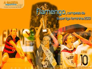 Resultado de imagem para flamengo campeão no voleibol