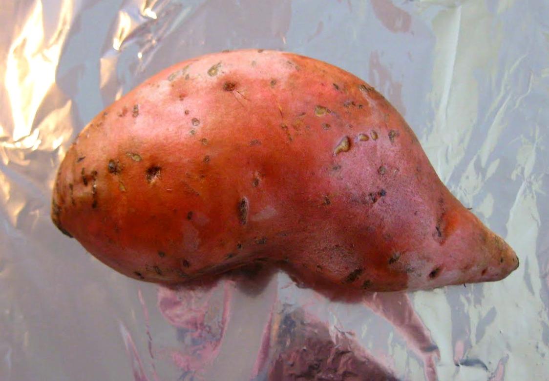 Simply scratch how to make sweet potato puree simply scratch for What is sweet potato puree