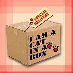 International Box Day
