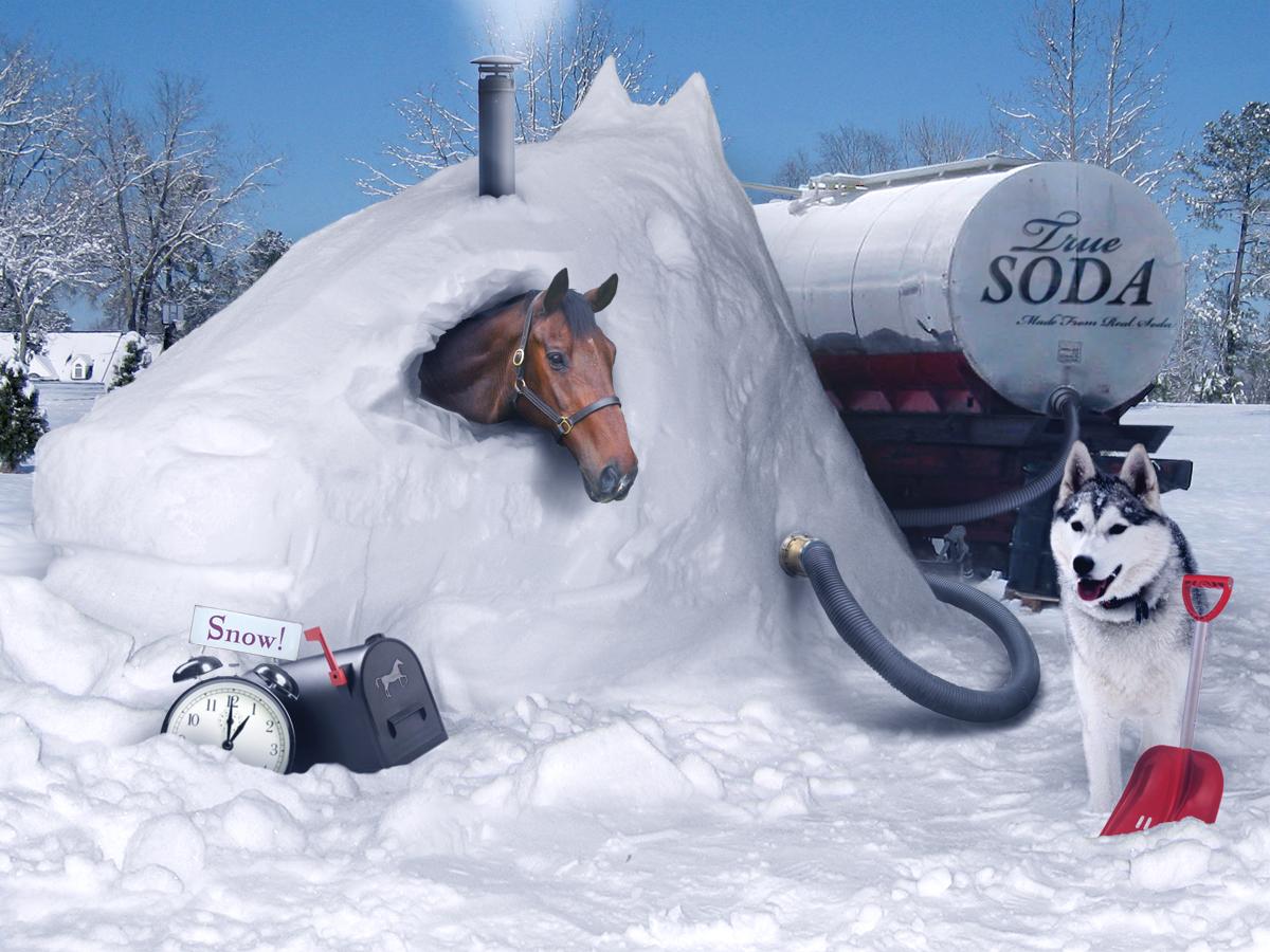 Horse Snow Sculptures