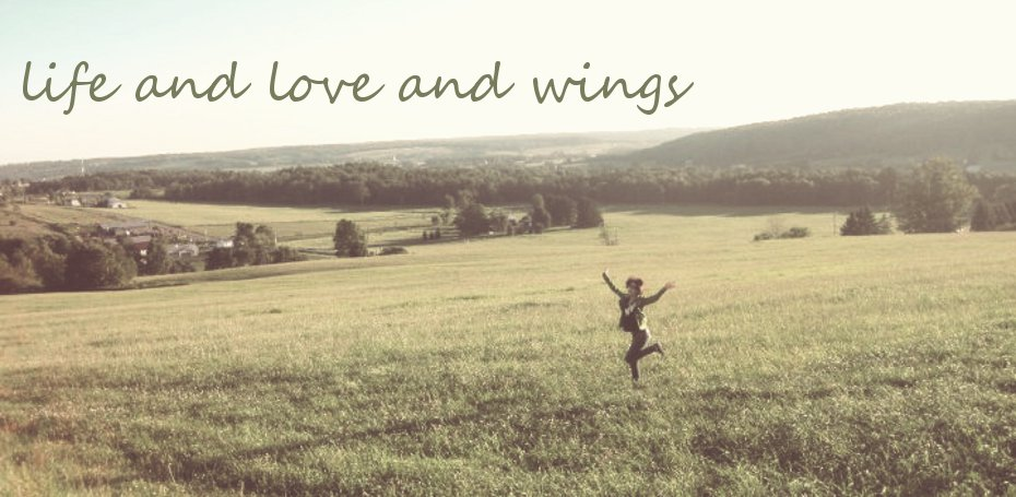 life and love and wings