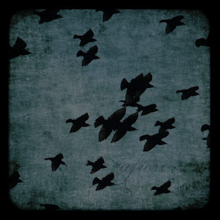 dark birds dark sky black and white ttv photography art photo konstfoto konstfotografi Maria-Thérèse Andersson afiori
