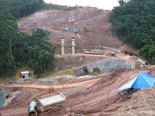 S.Bernardo perde 15 hectares de Mata Atlântica