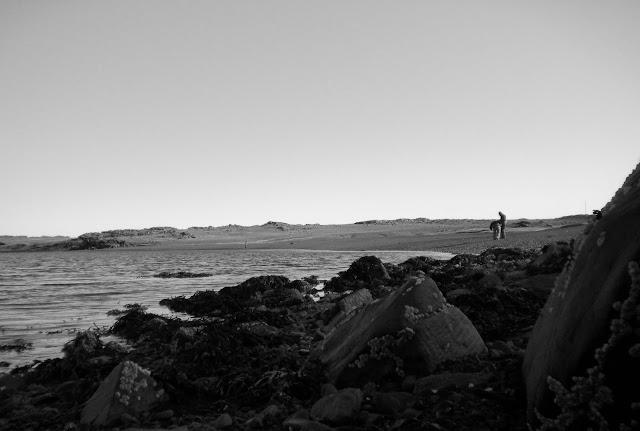 playa de arena de hofn