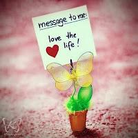 Ame a Vida! Visite o blog da Sandra