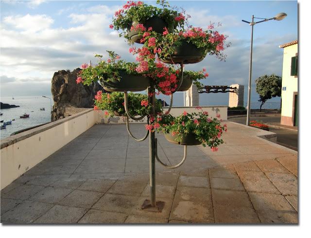estrutura para flores