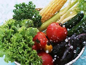 21 Motivos Para Ser Vegetariano