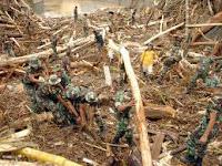 DPD, Ikut, Bantu, Korban, Banjir di, Wasior,Teluk, Wondama, bencana, Provinsi, Papua, Barat