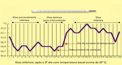 M todos contraceptivos e dst 39 s m todo das temperaturas basais for Temperatura frigo da 1 a 7