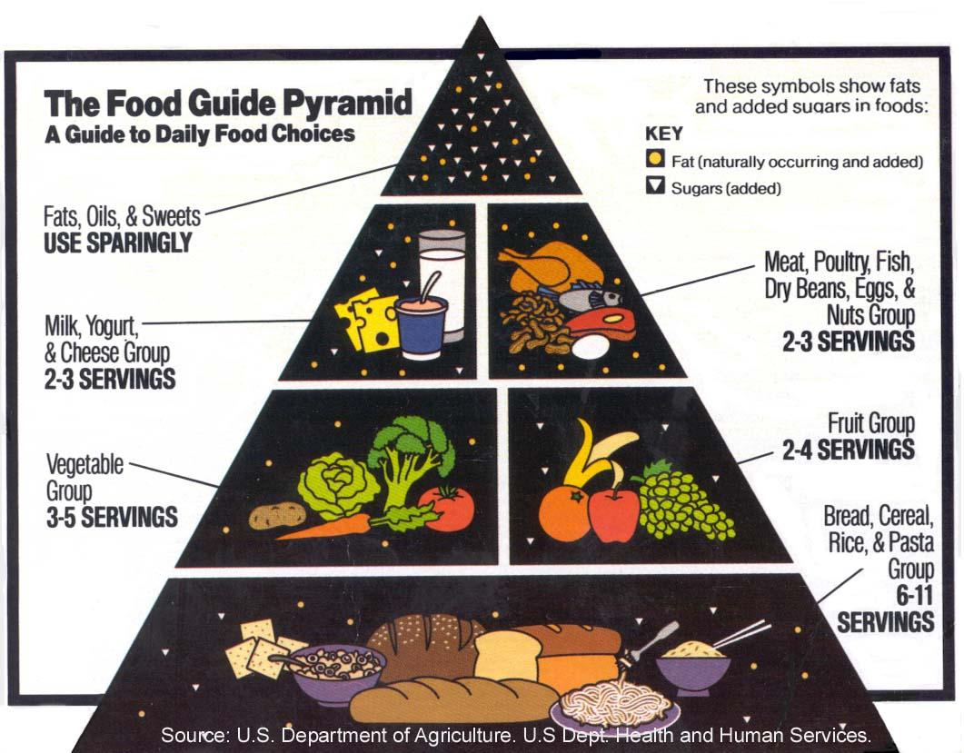 food an nutrition