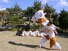 Festival Bela diri Dunia Korea