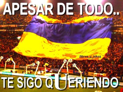 Fotos de Logo y escudo Logo y escudo Tigres - Imagenes De Tigres Equipo De Futbol