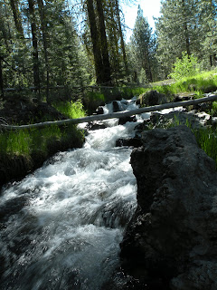Lassen National Forest, small waterfall on Hat Creek