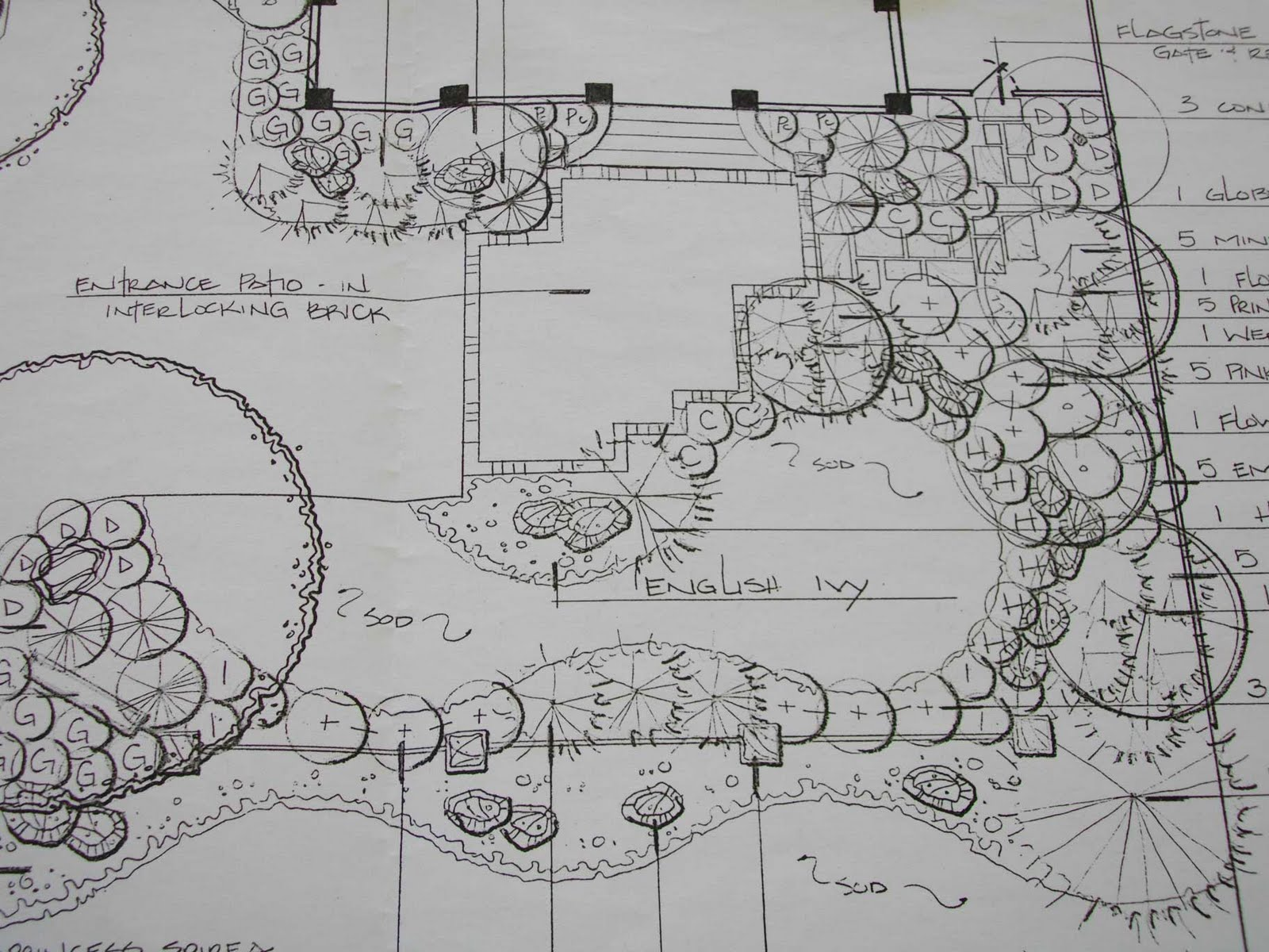 The cheeky designer a landscape plan for Landscape plan drawing