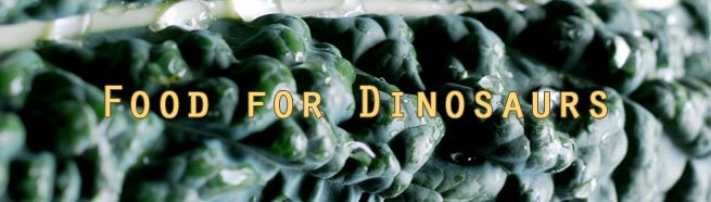 Food for Dinosaurs