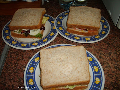 sandwich terminados