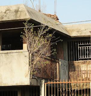 Periodismo sobre hechos extraordinarios la casa maldita for Villas y bungalows en mazatlan